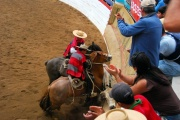 Chile - gauchowskie rodeo 27
